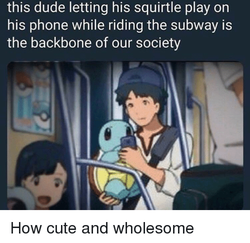 backbone: this dude letting his squirtle play on  his phone while riding the subway is  the backbone of our society How cute and wholesome