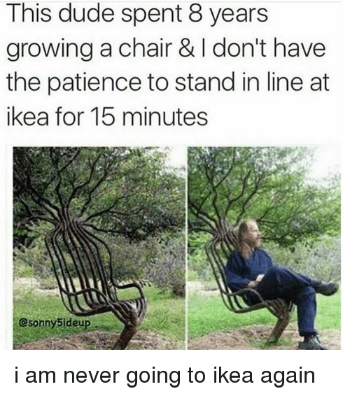 Dude, Ikea, and Memes: This dude spent 8 years  growing a chair & don't have  the patience to stand in line at  ikea for 15 minutes  Csonny5ideup i am never going to ikea again