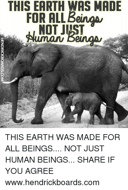 rpo: THIS EARTH WAS MADE  FOR ALL/3eingu  NOT JUST  A ir T  LJ  RPO  ARN  EO  HENDRICKBOARDS.COM THIS EARTH WAS MADE FOR ALL BEINGS.... NOT JUST HUMAN BEINGS...   SHARE IF YOU AGREE  www.hendrickboards.com