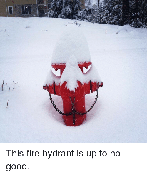 Up To No Good: This fire hydrant is up to no good.