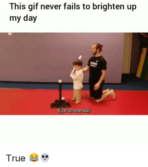 Funny, Gif, and True: This gif never fails to brighten up  my day  e on the ball True 😂💀