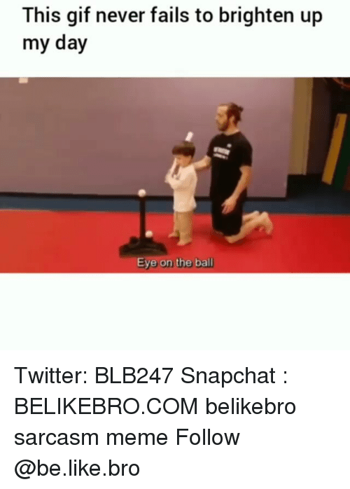 Be Like, Gif, and Meme: This gif never fails to brighten up  my day  Eye on the ball Twitter: BLB247 Snapchat : BELIKEBRO.COM belikebro sarcasm meme Follow @be.like.bro