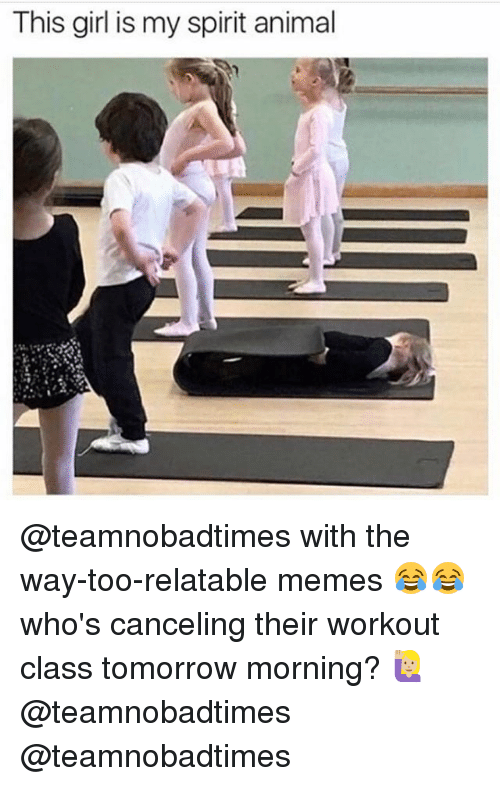 Memes, Animal, and Girl: This girl is my spirit animal @teamnobadtimes with the way-too-relatable memes 😂😂 who's canceling their workout class tomorrow morning? 🙋🏼 @teamnobadtimes @teamnobadtimes