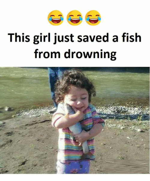 This girl just saved a fish from drowning fish meme on for Saving fish from drowning