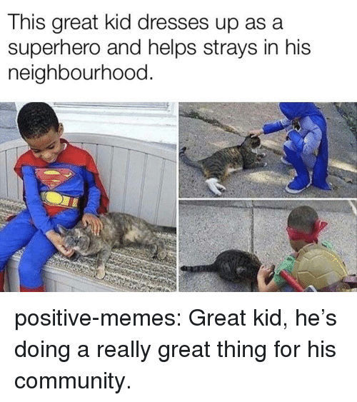 asa: This great kid dresses up asa  superhero and helps strays in his  neighbourhood. positive-memes:  Great kid, he's doing a really great thing for his community.
