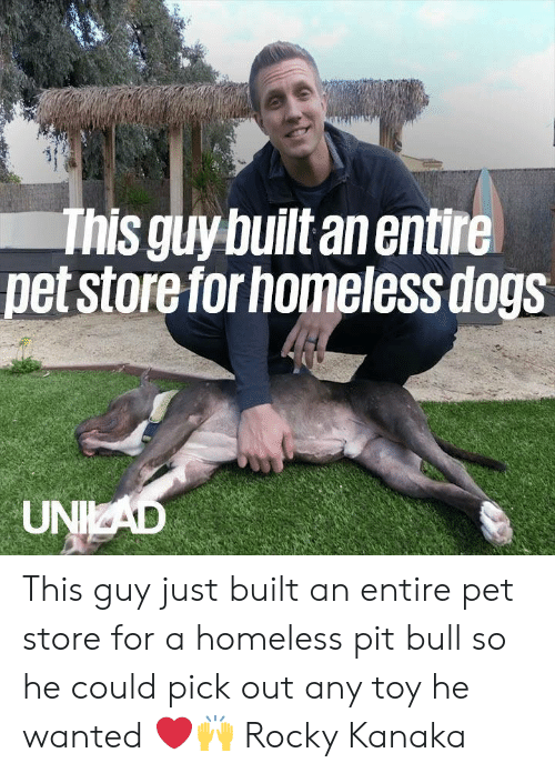 Pet Store: This guy built an entire  pet store for homeless dogs  UNKAD This guy just built an entire pet store for a homeless pit bull so he could pick out any toy he wanted ❤️️🙌  Rocky Kanaka