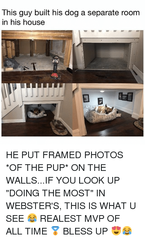 """Bless Up, Memes, and House: This guy built his dog a separate room  in his house  参 HE PUT FRAMED PHOTOS *OF THE PUP* ON THE WALLS...IF YOU LOOK UP """"DOING THE MOST"""" IN WEBSTER'S, THIS IS WHAT U SEE 😂 REALEST MVP OF ALL TIME 🥇 BLESS UP 😍😂"""