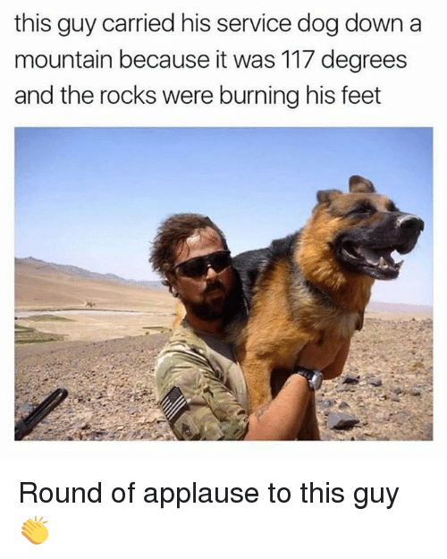 Funny Meme Applause : Best memes about round of applause