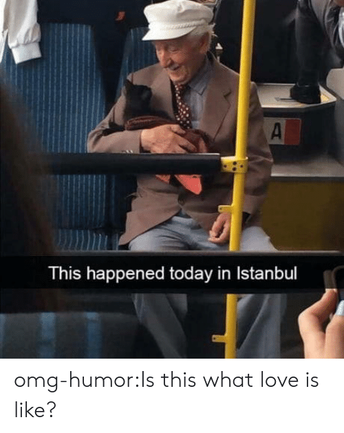 Istanbul: This happened today in Istanbul omg-humor:Is this what love is like?