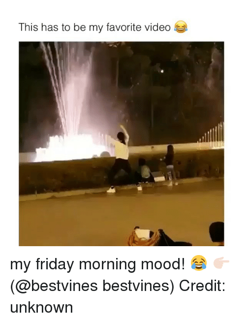 Friday, Memes, and Mood: This has to be my favorite video my friday morning mood! 😂 👉🏻(@bestvines bestvines) Credit: unknown