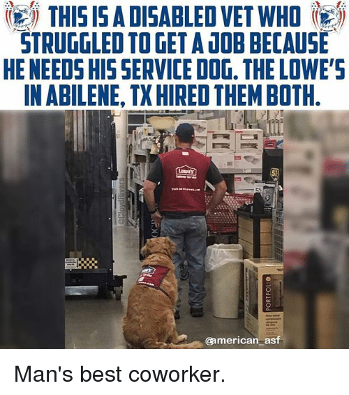 dobs: THIS I5 ADISABLED VET WHO  STRUGGLED TO GET A DOB BECAUSE  HE NEEDS HIS SERVICE DOG. THE LOWE'S  IN ABILENE, TX HIRED THEM BOTH  @american asf Man's best coworker.
