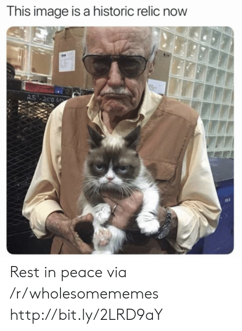 relic: This image is a historic relic now  25'-250 Rest in peace via /r/wholesomememes http://bit.ly/2LRD9aY
