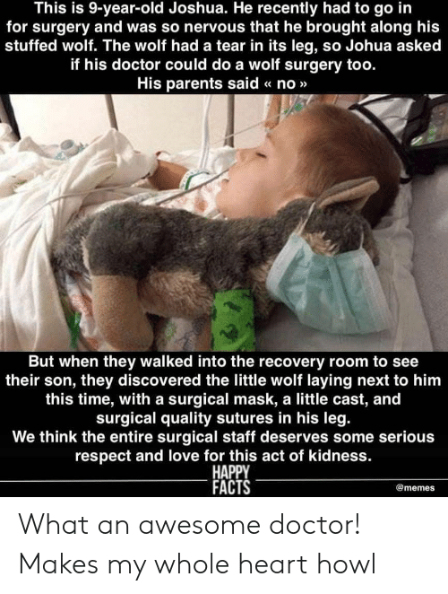 joshua: This is 9-year-old Joshua. He recently had to go in  for surgery and was so nervous that he brought along his  stuffed wolf. The wolf had a tear in its leg, so Johua asked  if his doctor could do a wolf surgery too.  His parents said « no»>  But when they walked into the recovery room to see  their son, they discovered the little wolf laying next to him  this time, with a surgical mask, a little cast, and  surgical quality sutures in his leg  We think the entire surgical staff deserves some serious  respect and love for this act of kidness.  HAPPY  FACTS  @memes What an awesome doctor! Makes my whole heart howl