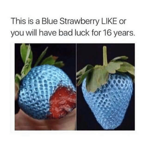 like: This is a Blue Strawberry LIKE or  you will have bad luck for 16 years.