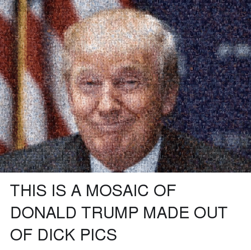 Dick Pics, Dicks, and Donald Trump: THIS IS A MOSAIC OF DONALD TRUMP MADE OUT OF DICK PICS