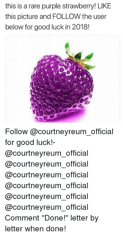 """Memes, Good, and Purple: this is a rare purple strawberry! LIKE  this picture and FOLLOW the user  below for good luck in 2018! Follow @courtneyreum_official for good luck!- @courtneyreum_official @courtneyreum_official @courtneyreum_official @courtneyreum_official @courtneyreum_official @courtneyreum_official Comment """"Done!"""" letter by letter when done!"""