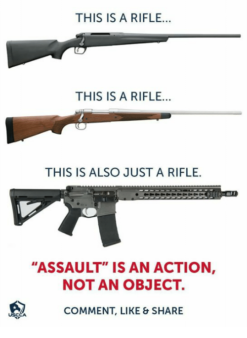 """Memes, 🤖, and Comment: THIS IS A RIFLE...  THIS IS A RIFLE...  THIS IS ALSO JUST A RIFLE  """"ASSAULT"""" IS AN ACTION  NOT AN OBJECT.  COMMENT, LIKE & SHARE"""