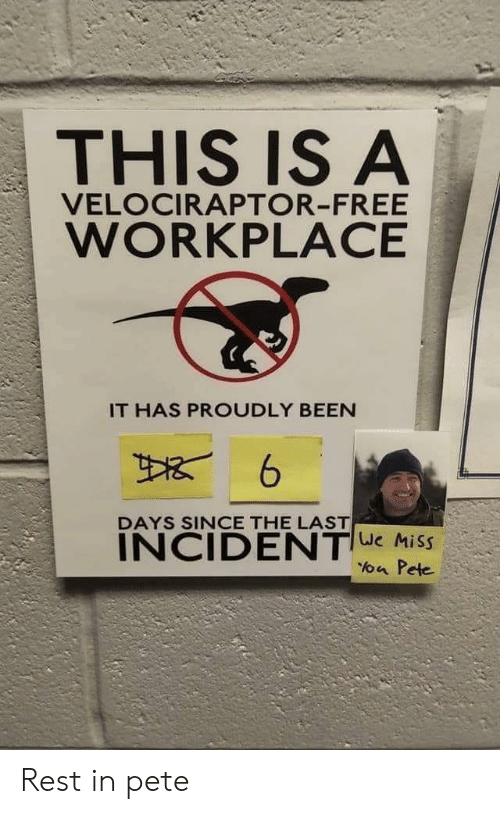 Velociraptor: THIS IS A  VELOCIRAPTOR-FREE  WORKPLACE  IT HAS PROUDLY BEEN  DAYS SINCE THE LAST  INCIDENTe Miss  a Pete Rest in pete