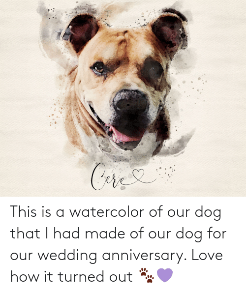 wedding anniversary: This is a watercolor of our dog that I had made of our dog for our wedding anniversary. Love how it turned out 🐾💜