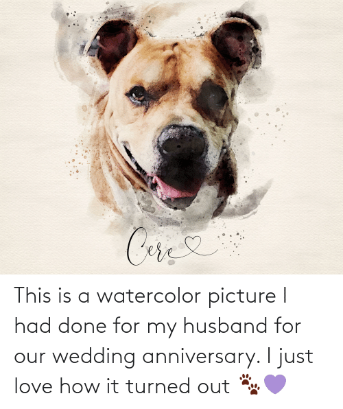 wedding anniversary: This is a watercolor picture I had done for my husband for our wedding anniversary. I just love how it turned out 🐾💜