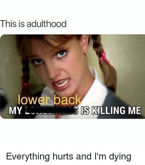 Girl Memes, Hurts, and Bac: This is adulthood  lower bac  MY L  IS KILLING ME Everything hurts and I'm dying