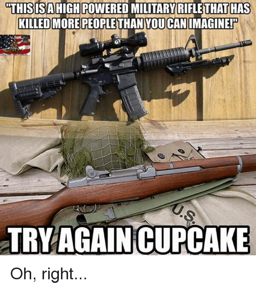 🤖: THIS IS AHIGH POWERED MILITARY RIFLETHATTHAS  KILLED  MORE PEOPLETHAN YOUCAN MAGINEP  TRY AGAIN CUPCAKE Oh, right...