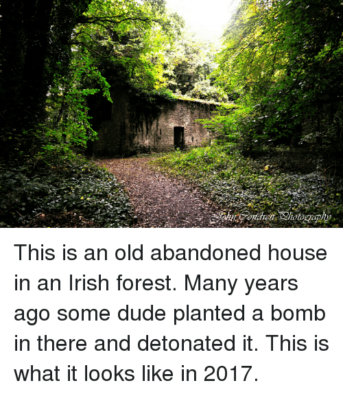 Funny and Sad: This is an old abandoned house in an Irish forest. Many years ago some dude planted a bomb in there and detonated it. This is what it looks like in 2017.