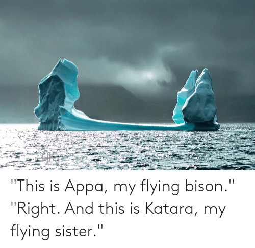 """bison: """"This is Appa, my flying bison."""" """"Right. And this is Katara, my flying sister."""""""