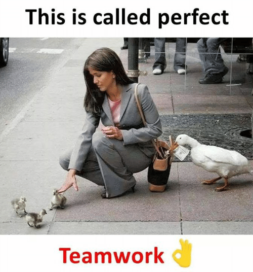 teamwork: This is called perfect  Teamwork