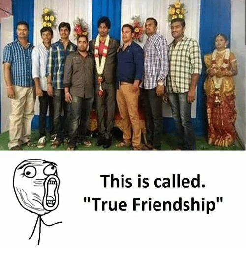"""Memes, True, and Friendship: This is called.  True Friendship"""""""