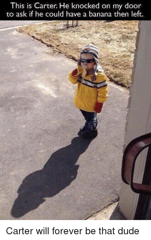 Hood: This is Carter. He knocked on my door  to ask if he could have a banana then  left. Carter will forever be that dude