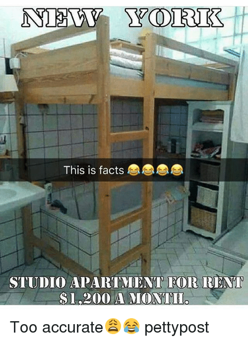 Bailey Jay, Facts, And Memes: This Is Facts STUDIO APARTMENT EOR RENT $1,200