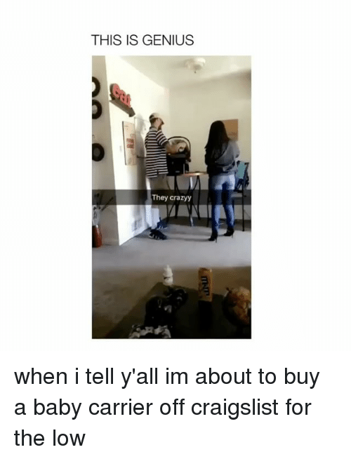 Craigslist, Genius, and Girl Memes: THIS IS GENIUS  They crazyy when i tell y'all im about to buy a baby carrier off craigslist for the low