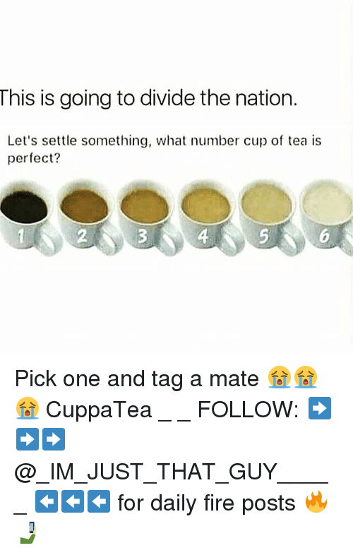 Fire, Memes, and 🤖: This is going to divide the nation.  Let's settle something, what number cup of tea is  perfect?  2  4 Pick one and tag a mate 😭😭😭 CuppaTea _ _ FOLLOW: ➡➡➡@_IM_JUST_THAT_GUY_____ ⬅⬅⬅ for daily fire posts 🔥🤳🏼