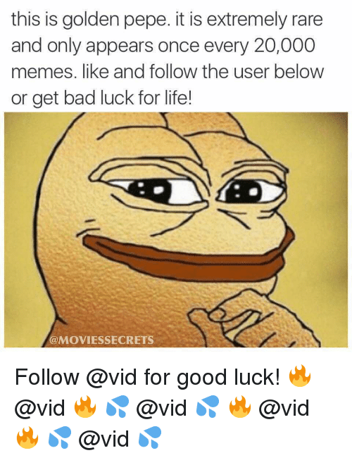 Golden Pepe: this is golden pepe. it is extremely rare  and only appears once every 20,000  memes. like and follow the user below  or get bad luck for life!  @MOVIESSECRETS Follow @vid for good luck! 🔥 @vid 🔥 💦 @vid 💦 🔥 @vid 🔥 💦 @vid 💦