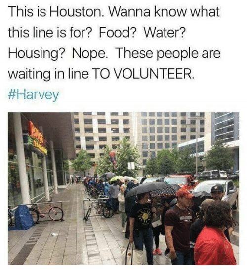 Food, Houston, and Water: This is Houston. Wanna know what  this line is for? Food? Water?  Housing? Nope. These people are  waiting in line TO VOLUNTEER.