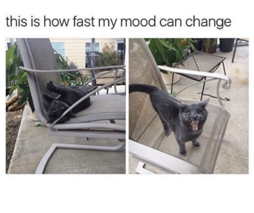 Memes, Mood, and Change: this is how fast my mood can change