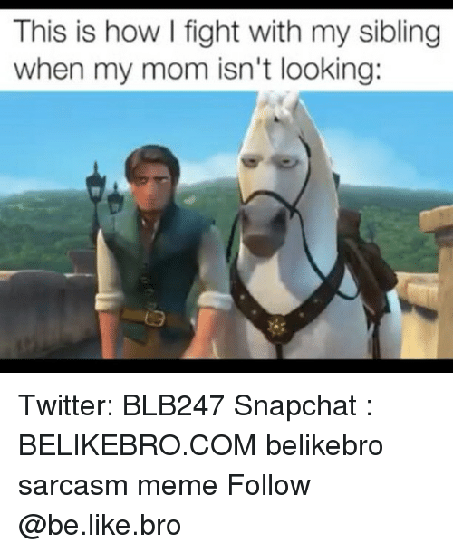 Be Like, Meme, and Memes: This is how fight with my sibling  when my mom isn't looking: Twitter: BLB247 Snapchat : BELIKEBRO.COM belikebro sarcasm meme Follow @be.like.bro