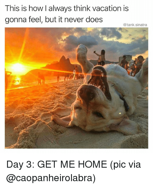 Funny, Home, and Vacation: This is how I always think vacation is  gonna feel, but it never does  @tank.sinatra Day 3: GET ME HOME (pic via @caopanheirolabra)