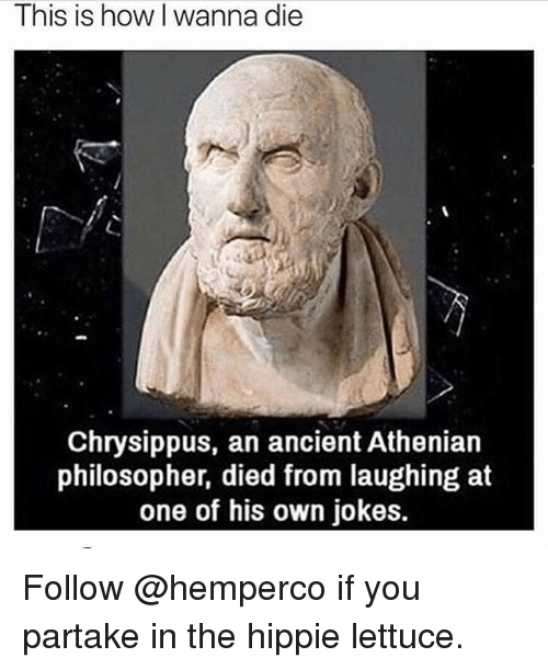 Memes, Jokes, and Ancient: This is how I wanna die  Chrysippus, an ancient Athenian  philosopher, died from laughing at  one of his own jokes. Follow @hemperco if you partake in the hippie lettuce.