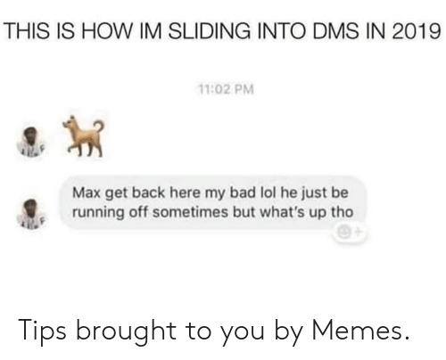 sliding: THIS IS HOW IM SLIDING INTO DMS IN 2019  11:02 PM  Max get back here my bad lol he just be  running off sometimes but what's up tho Tips brought to you by Memes.