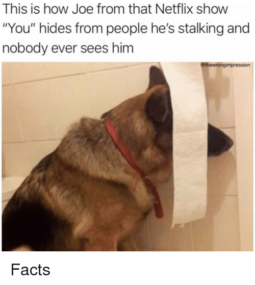 """Stalking: This is how Joe from that Netflix show  """"You"""" hides from people he's stalking and  nobody ever sees him  @thewrongimpression Facts"""