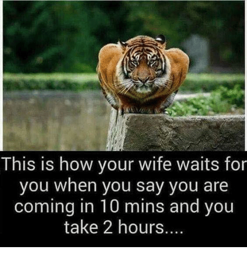 Dank, Wife, and 🤖: This is how your wife waits for  you when you say you are  coming in 10 mins and you  take 2 hours....