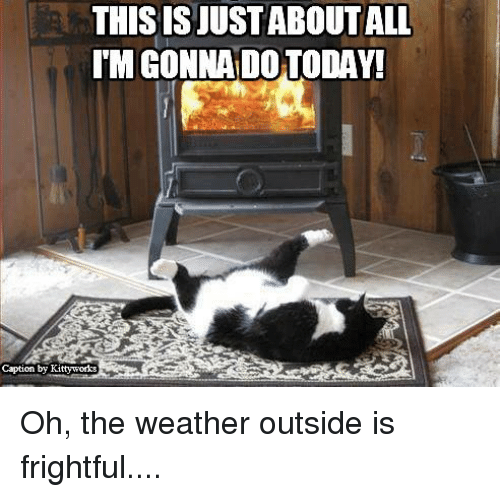 Memes, The Weather, and Weather: THIS IS JUSTABOUTALL  IMGONNADO TODAY!  Caption by Kittyworks Oh, the weather outside is frightful....