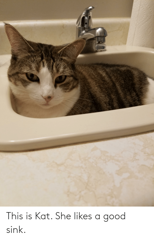 kat: This is Kat. She likes a good sink.