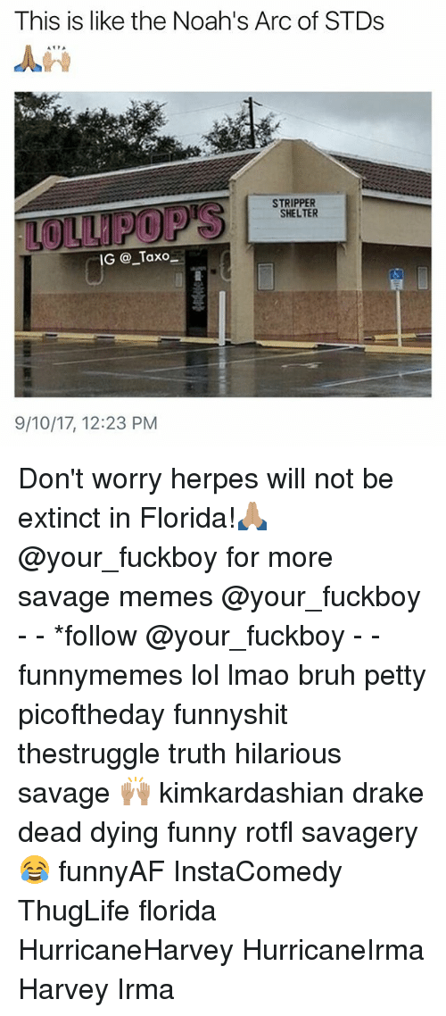 Bruh, Drake, and Fuckboy: This is like the Noah's Arc of STDs  STRIPPER  SHELTER  IG @_Taxo  9/10/17, 12:23 PM Don't worry herpes will not be extinct in Florida!🙏🏽 @your_fuckboy for more savage memes @your_fuckboy - - *follow @your_fuckboy - - funnymemes lol lmao bruh petty picoftheday funnyshit thestruggle truth hilarious savage 🙌🏽 kimkardashian drake dead dying funny rotfl savagery 😂 funnyAF InstaComedy ThugLife florida HurricaneHarvey HurricaneIrma Harvey Irma