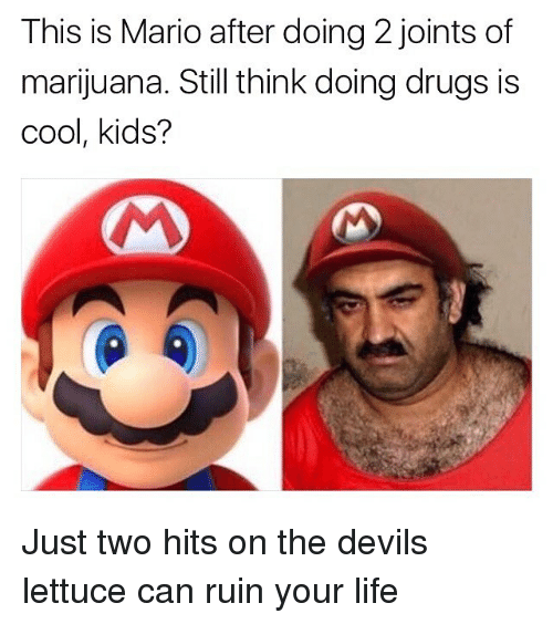The Devils Lettuce: This is Mario after doing 2 joints of  marijuana. Still think doing drugs is  cool, kids? Just two hits on the devils lettuce can ruin your life