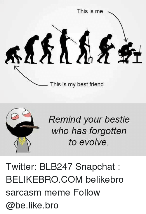 Be Like, Best Friend, and Meme: This is me  This is my best friend  Remind your bestie  who has forgotten  to evolve. Twitter: BLB247 Snapchat : BELIKEBRO.COM belikebro sarcasm meme Follow @be.like.bro
