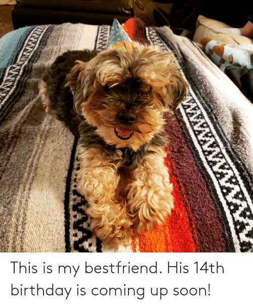 bestfriend: This is my bestfriend. His 14th birthday is coming up soon!