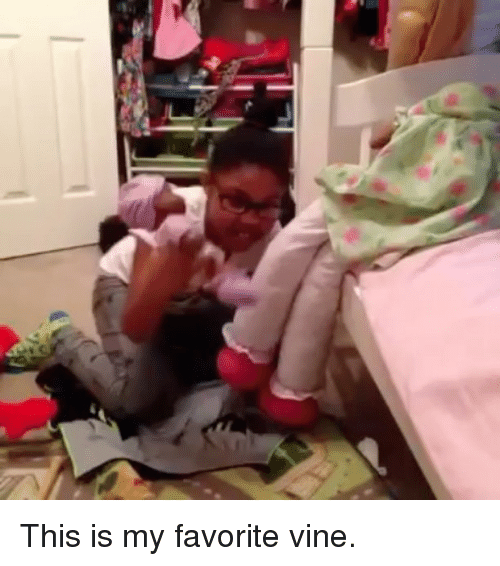 Vine, This, and This Is: This is my favorite vine.